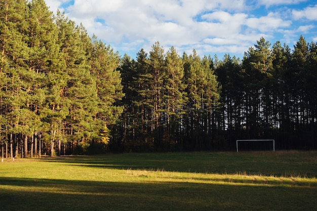 A football field in the middle of a forest with a white soccer goal in the sun