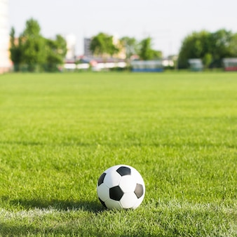 Football in grass with blurred background