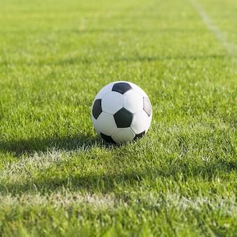 잔디 축구