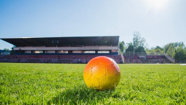草の上にサッカー