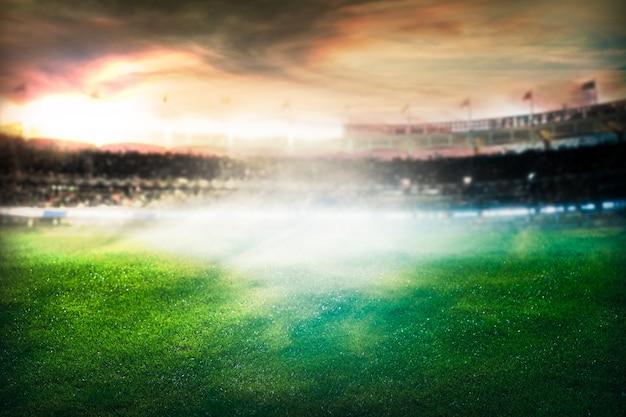 サッカー、サッカーの試合。草をクローズアップ。スタジアムのナイトイベントライト。