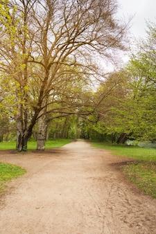 秋の公園の歩道