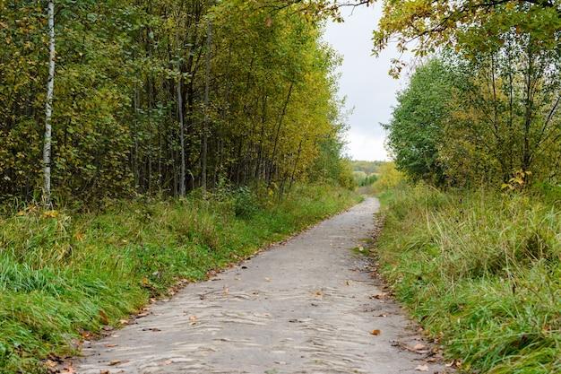紅葉に覆われた森の小道。青い湖の近くの秋の風景。カザン、ロシア。