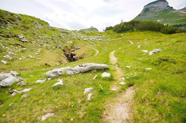 아름다운 오스트리아 언덕 한가운데있는 보도