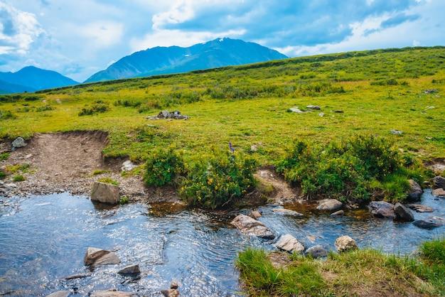 Тропинка через горный ручей в долине к далеким чудесным гигантским горам. походная тропа. богатая флора высокогорья. красочная растительность возле водного потока. удивительный солнечный пейзаж величественной природы.