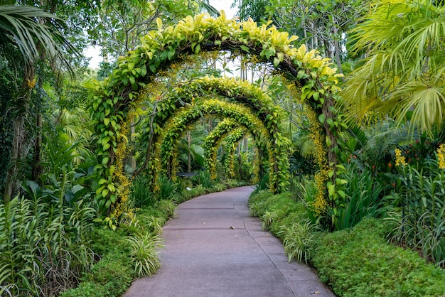 꽃과 식물의 아름다운 아치 아래 보도.