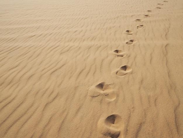 砂の足跡。