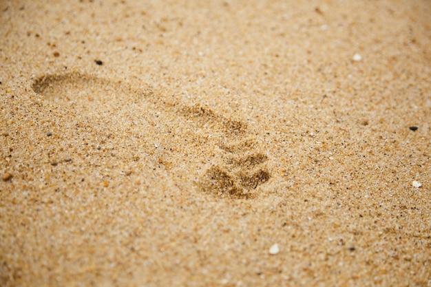 濡れた砂のディテールに素足の足跡