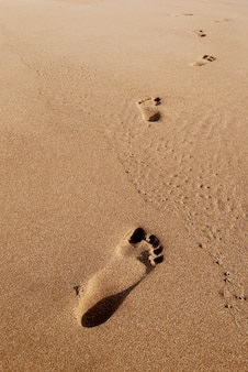 Footprints on the beach summer sand