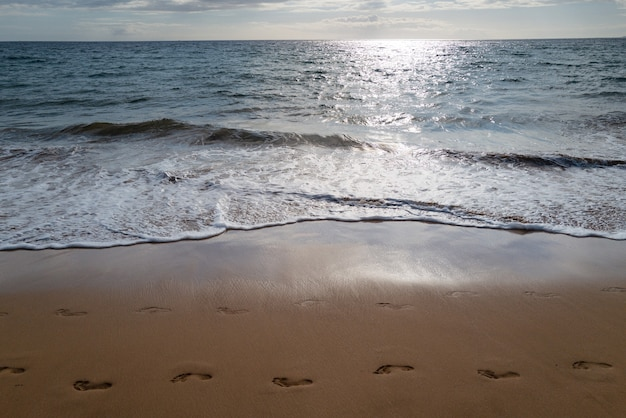Footprints at golden sand footsteps beach with golden sand turquoise ocean water panoramic sea view ...