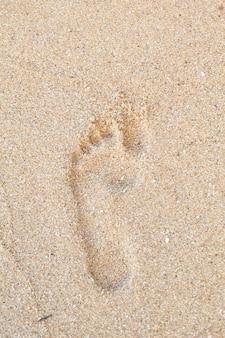 浜の砂の上の足跡