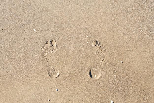 海の近くの砂の足跡
