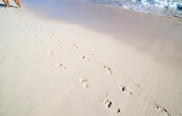 해변의 젖은 모래에 발자국