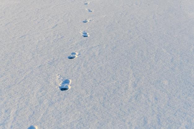 Следы подошвы обуви на белом снегу