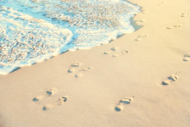 晴れた日に海の水で濡れた砂浜の足跡