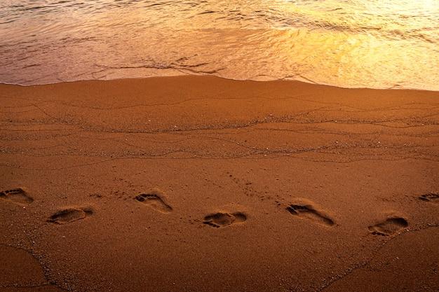 朝の砂浜の足跡