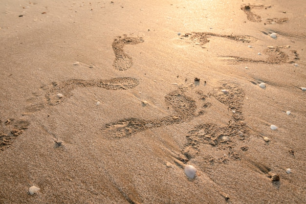 해변에 발자국. 황금빛 모래와 석양에 발자취입니다. 지나가는 날의 추억.