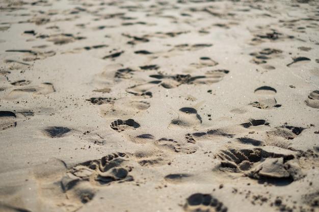 아침 공기의 모래 위에 발자국.