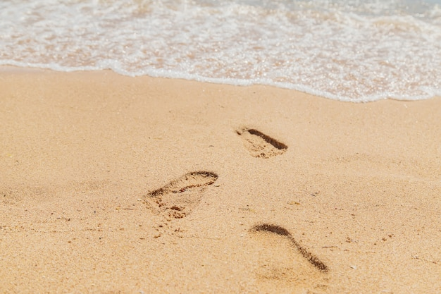 Footprints in the sand along the sea