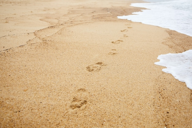 Footprints on the sand by the waves of the beach