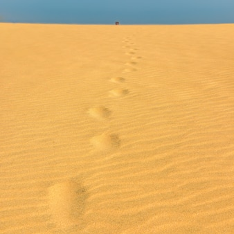 Footprints in the sand to the top of dune