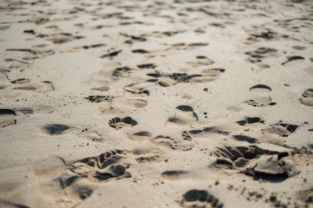 Footprints on the sands of the morning air.