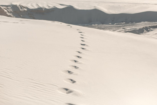Footprints in the sandy desert