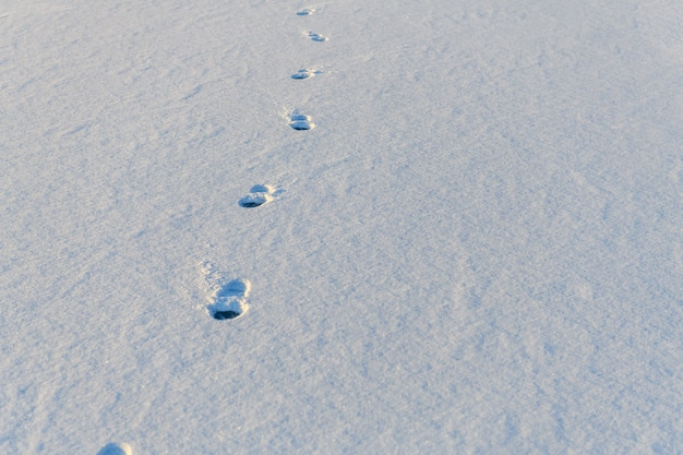 Footprints of shoe sole on the white snow