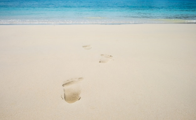 Footsteps on coral sandy beach, summer