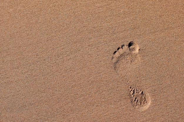 해변에서 모래에 발자취