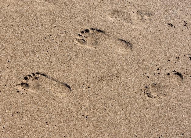 Следы на песке на пляже на закате