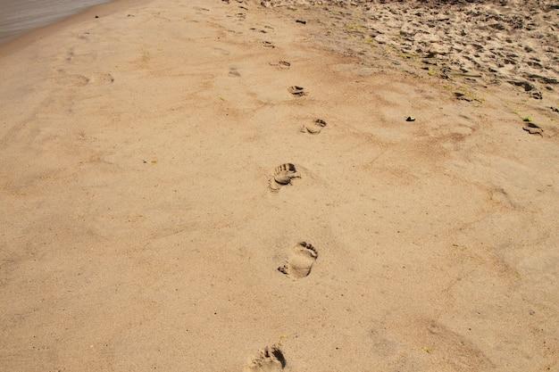 여름에 바다 해변에 발자취입니다. 해변에 맨발의 발자국