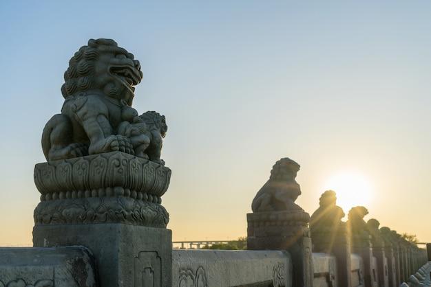 Forbidden city lions