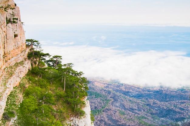 На переднем плане огромный камень, покрытый мхом, и деревья на склоне горы.