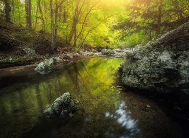 해질녘 숲과 산 강입니다. 저녁에는 푸른 숲, 강, 바위, 돌, 노란 햇빛이 있는 다채로운 풍경. 산에서 여름입니다. 관광 여행. 여행과 자연 배경입니다. 깊은 협곡