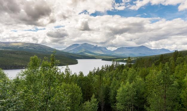 노르웨이 rondane 국립 공원의 숲과 산