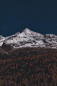森と雪に覆われた山