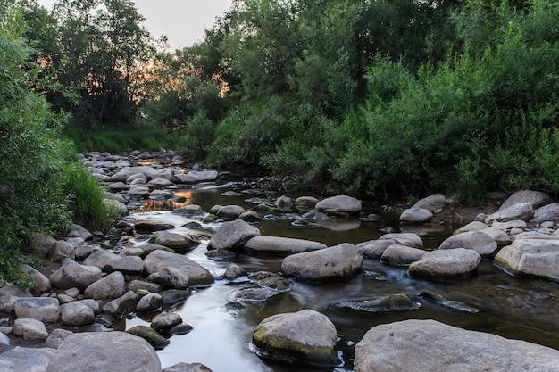 Лесной ручей. красивый летний вечерний пейзаж.