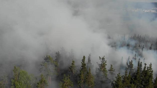 Яростно разгораются лесные пожары.