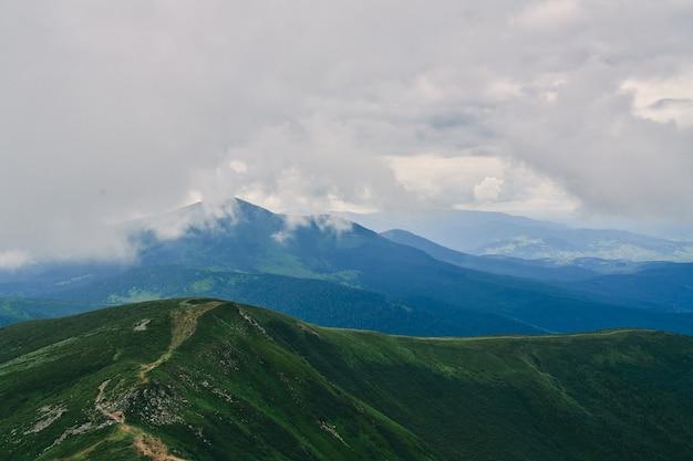 Лес. зеленый горный лесной пейзаж. туманный горный лес. фантастический лесной пейзаж. горный лес в ландшафте облаков. туманный лес. горный лесной пейзаж. темный лес в пейзаже дымки.