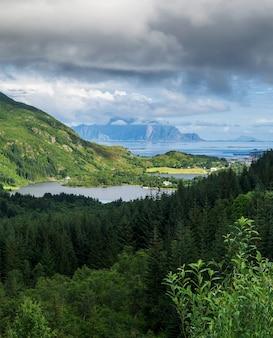 전경의 숲, 거리의 푸른 산, lofoten 군도, 노르웨이