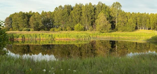 Лес отражается в водной глади озера