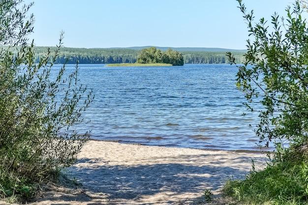 Лесные озерные кусты и остров вдалеке