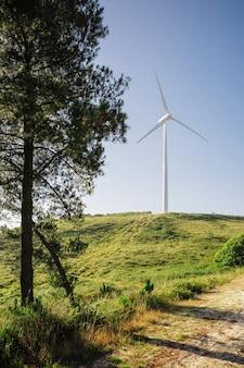 백그라운드에서 전기를 생성 하는 풍력 터빈과 화창한 날에 숲 풍경. 자연과 생태 에너지 생산 개념입니다.