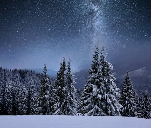 Forest on a mountain ridge covered with snow. milky way in a starry sky. christmas winter night