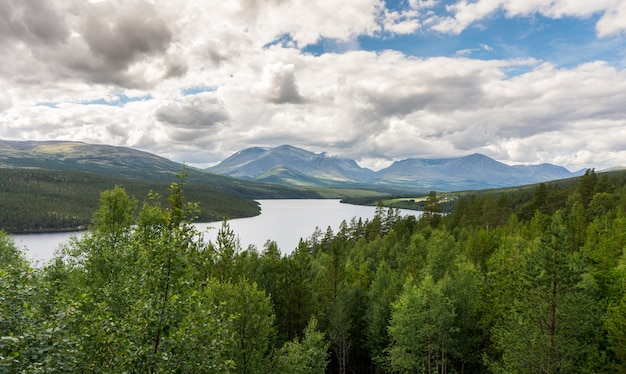 Forest and mountains in rondane national park, norway