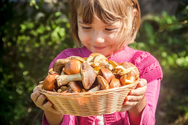 Forest mushrooms in the hands of a child. selective focus.