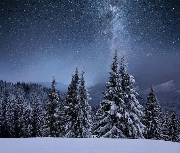 산 능선에 숲이 눈으로 덮여 있습니다. 별이 빛나는 하늘에서 은하수. 크리스마스 겨울 밤