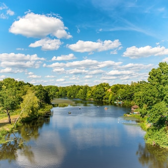 Forest on the river with blue sky and landscape of clouds
