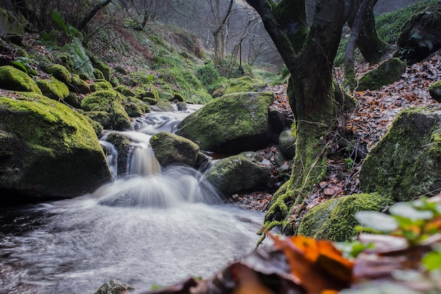 Forest river with waterfall in wicklow moutains, ireand.